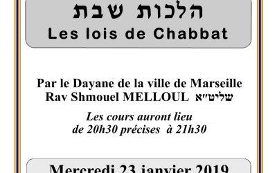 COURS DU RAV MELLOUL – DAYAN DE MARSEILLE